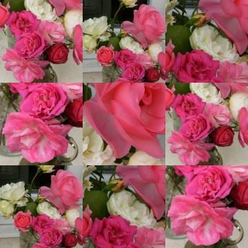 medium_collage1.3.jpg