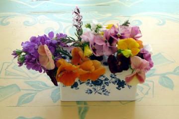 medium_pique_fleurs_portugais.jpg